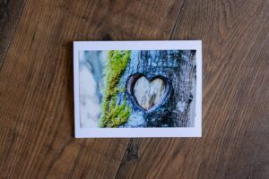 Tree Heart Greeting Card by Adele Cave Photography