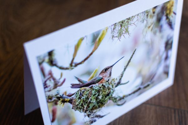 Greeting Card by Adele Cave Photography