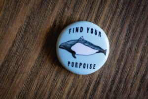 """Find Your Porpoise"" Pin by Hello Yellow Canary"