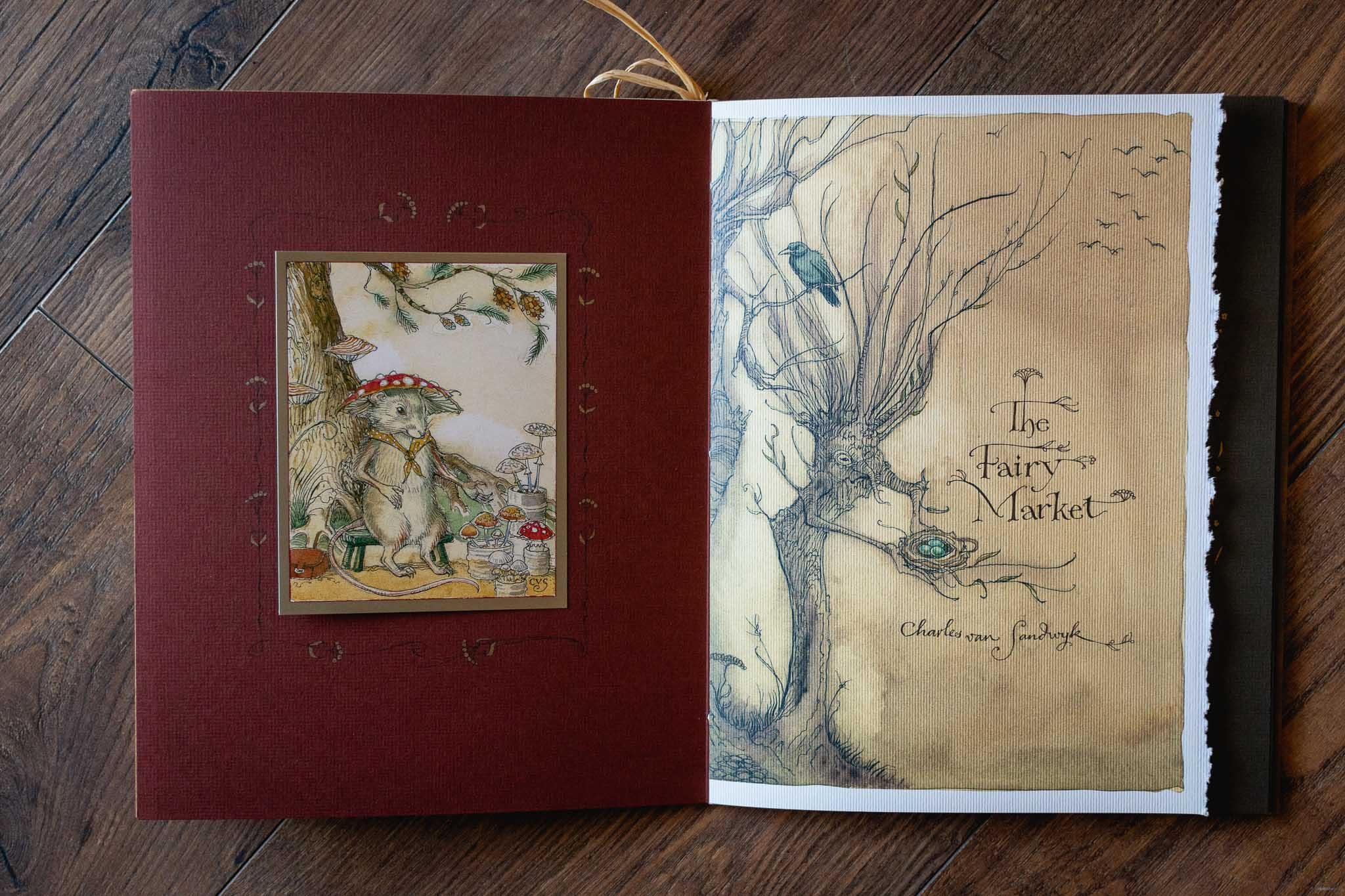 The Fairy Market Book by Charles van Sandwyk