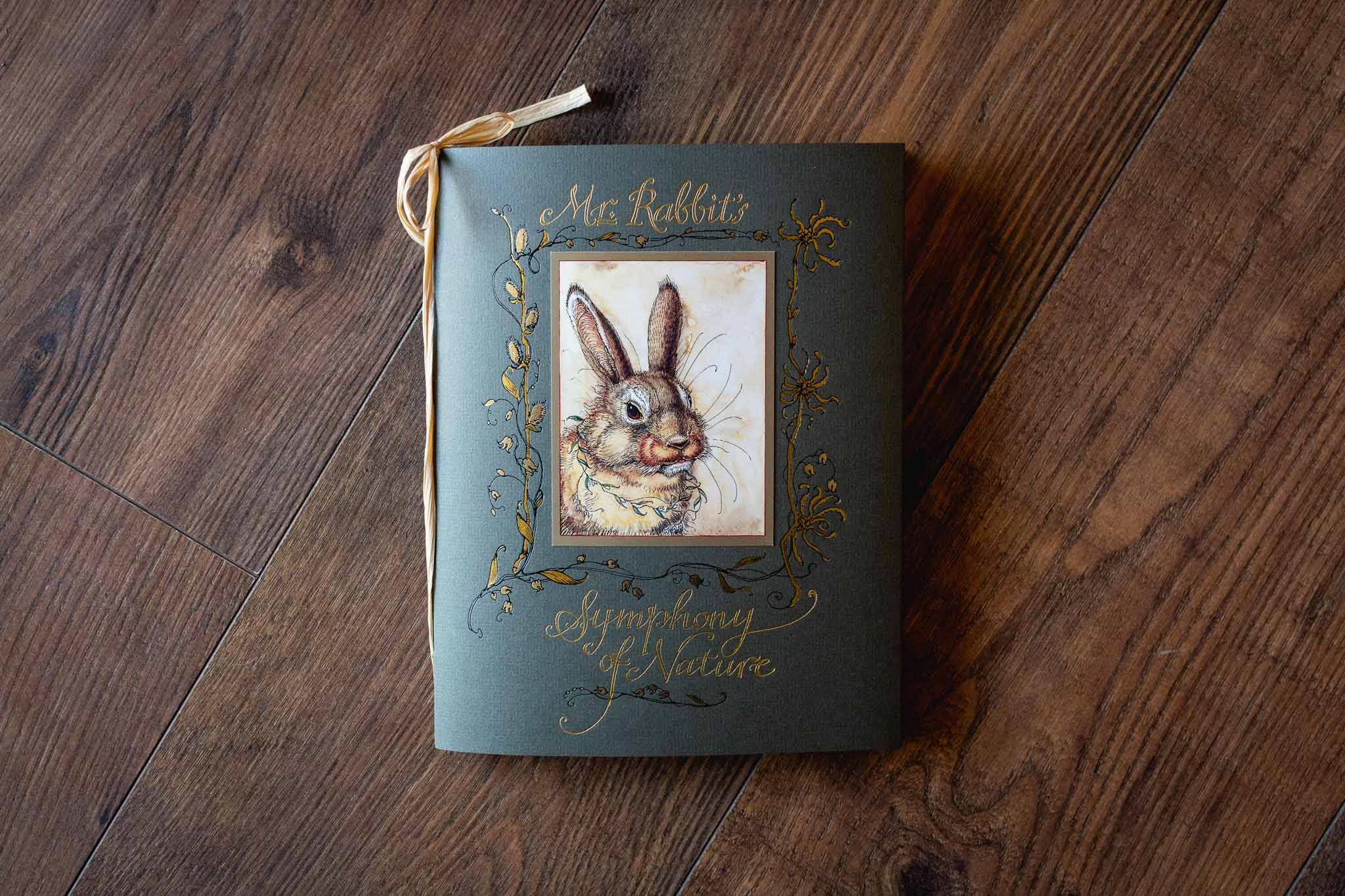 Mr Rabbit's Symphony of Nature Book by Charles van Sandwyk